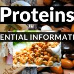 Proteins – Essential Information